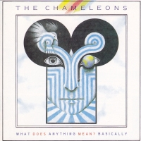"Record Review:  The Chameleons - ""What Does Anything Mean? Basically"" UK CD [part 1]"