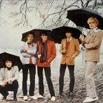 Japan-umbrellas