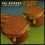 the bongos - drumsalongthehudsonUSCDA