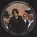 blow-monkeys-staringattheseaukcda