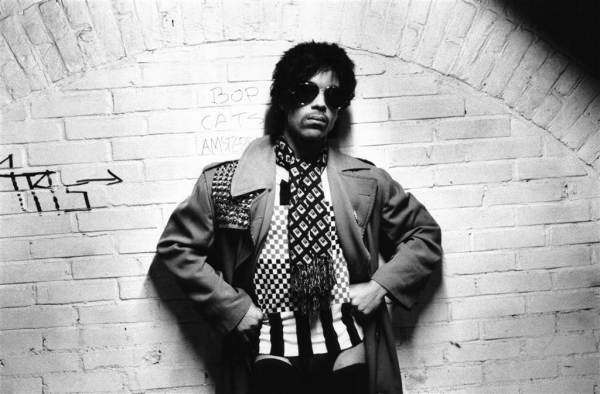 Prince triumphant ©1981 Virginia Turbett