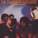 the teardrop explodes - kilimanjaroUKCDRMA