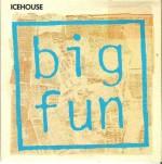 icehouse-bigfunozcd5a