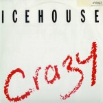 icehouse-crazyoz12a