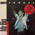 icehouse-mrbigoz12a