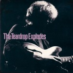 teardrop-explodes-youdisappearfromviewuk2x7a
