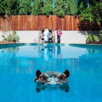 Record Review: Sparks - Hippopotamus EURO CD [part 1]