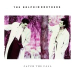 the dolphin brothers catch the fall cover