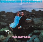 the soft boys underwater moonlight cover