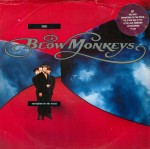 blow monkeys - springtime for the world cover art