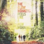 blow monkeys - a new morning cover art