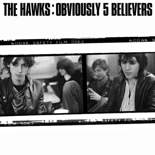 the hawks obviously 5 believers cover art